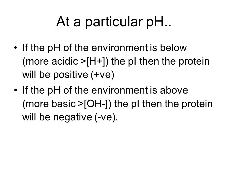 At a particular pH.. If the pH of the environment is below (more acidic >[H+]) the pI then the protein will be positive (+ve)